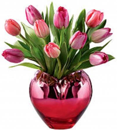 Tulips of Love