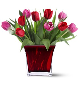 Tulips of Love Red Cube Arrangement in Tyngsboro, MA | BLOSSOMS