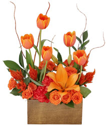 Tulips on Fire Floral Arrangement
