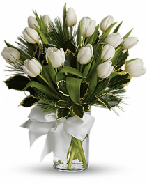 Tulips & Pine Arrangement