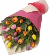 Tulips Presentation Bouquet