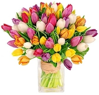 TULIPS SENSATIONS ARRANGEMENT