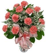 Twelve Pink Carnations Valentine's Day