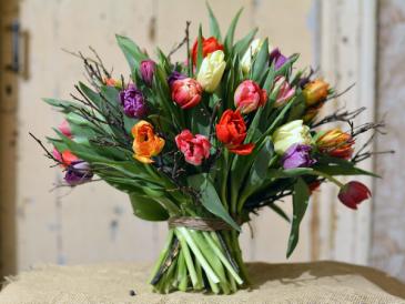 Twigy Tulips