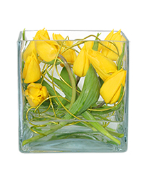 TWIRLING TULIPS Arrangement
