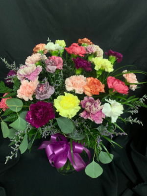 Two Dozen Assorted Carnations in Red Lake, ON | FOREVER GREEN GIFT BOUTIQUE