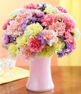 Two Dozen Colorful Carnations
