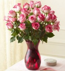Two Dozen Long Steam Exotic Pink Roses  Magnificent Roses
