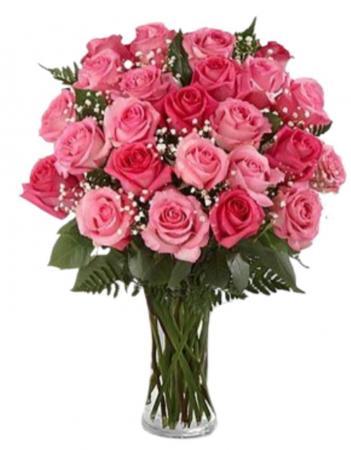 TWO DOZEN PINK ROSES ROSES