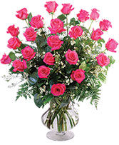 Two Dozen Pink Roses Vase Arrangement  in Pleasanton, Texas | The Olive Branch