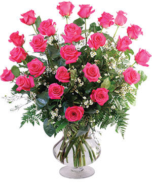 Two Dozen Pink Roses Vase Arrangement  in Northport, NY | Hengstenberg's Florist