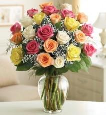 Two Dozen Premium  Long Stemmed Assorted Roses