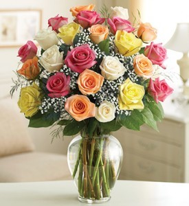 Two Dozen Premium  Long Stemmed Assorted Roses