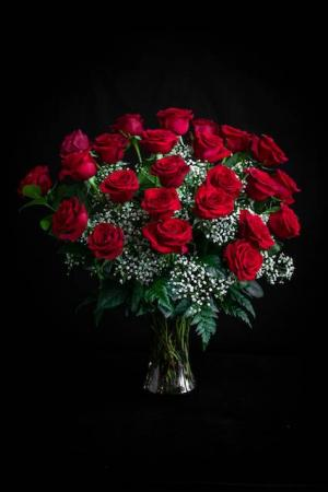 Two Dozen Radiant Roses