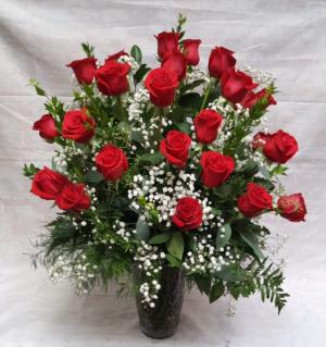 Two Dozen Red Roses  in Davis, CA | STRELITZIA FLOWER CO.