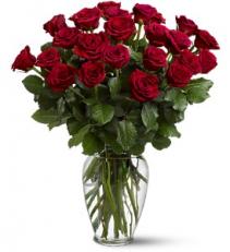 Two Dozen Long Red Roses  Arrangement