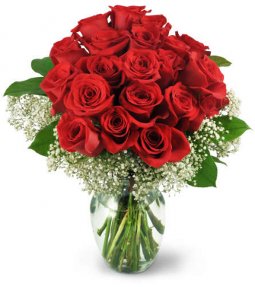 Two dozen Red Roses Clasic