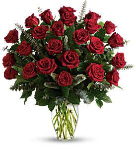 Two Dozen Red Roses Rose Arrangement