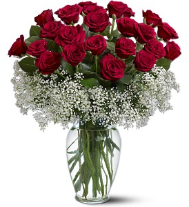 Two Dozen Red Roses Surrounded By Baby S Breath Vase In