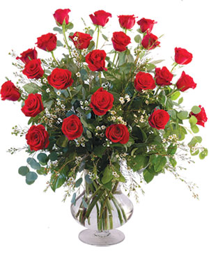Two Dozen Red Roses Vase Arrangement  in Northport, NY | Hengstenberg's Florist