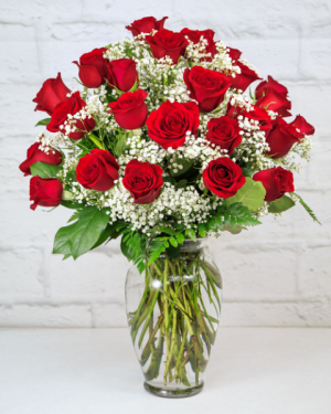 TWO Dozen Red Roses  with Baby's Breath in South Milwaukee, WI | PARKWAY FLORAL INC.