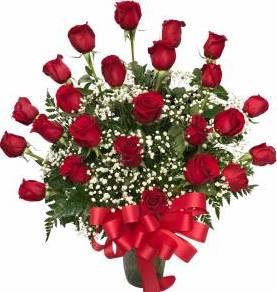 Stunning Roses 24 Long Stem Rose Arrangement in Seguin, TX   DIETZ FLOWER SHOP & TUXEDO RENTAL