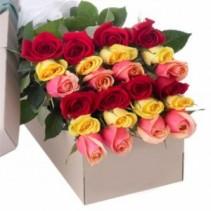 Two Dozen Roses  In Box Sale