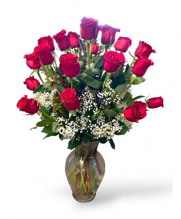 You're In My Heart!! Two Dozens Long Stems Ecuadorian  Roses