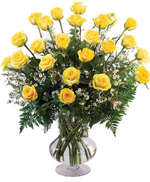 Two Dozen Yellow Roses Vase Arrangement  in Dallas, TX | Paula's Everyday Petals & More