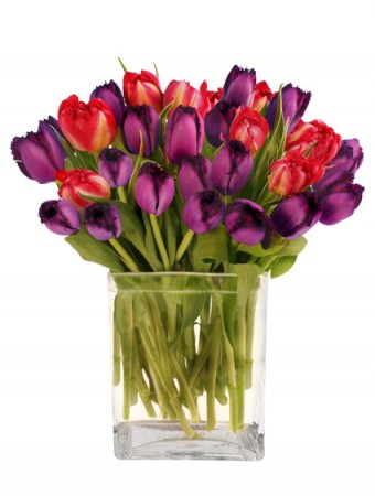 """""""Two Lips"""" Colorful Tulips in a Modern Vase"""
