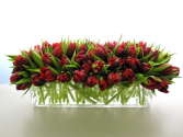 Tulips  Holiday Centrepiece