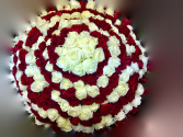 Ultimate 20 Dozen Red/White Rose Arrangement