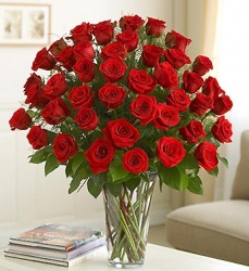 Ultimate Elegance 4 Dozen LONG Stem Roses by Enchanted Florist