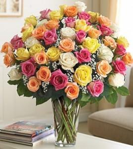 Ultimate Elegance Long Stem Assorted Roses **LIMITED TIME OFFER**