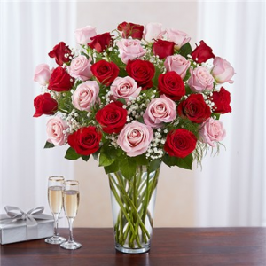 Ultimate Elegance™ Long Stem Pink & Red Roses  in Brooklyn, NY | FLORAL FANTASY