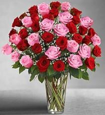 Ultimate Elegance™ Long Stem Pink & Red Roses Fresh Arrangement