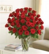 Ultimate Elegance Premium Long Stem Red Roses  4DZ All around