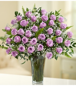 Ultimate Elegance™ Long Stem Purple Roses  in Croton On Hudson, NY | Cooke's Little Shoppe Of Flowers