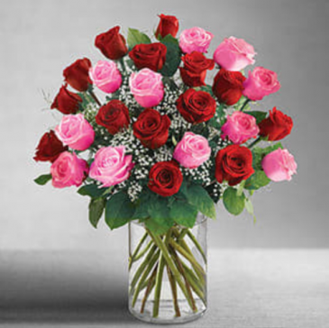 ULTIMATE ELEGANCE Two dozen red & pink roses