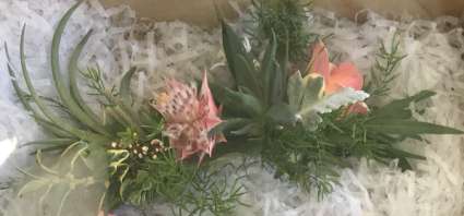 Unique Airplant Hairpiece