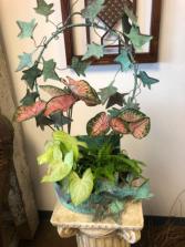 Unique container with live plants