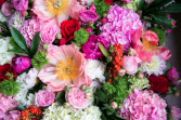 Monthly Floral Subscription