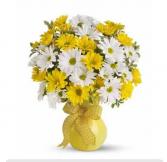 upsy daisy bouquet daisy arrangement