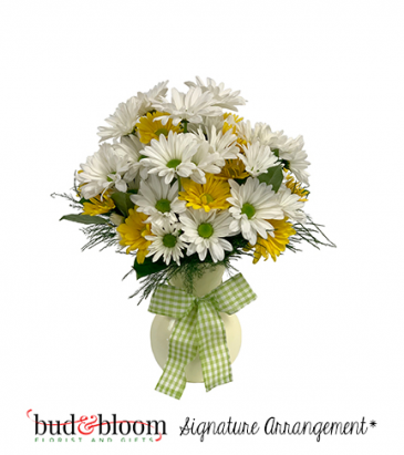 Upsy Daisy Bud & Bloom Signature Arrangement