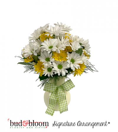 Upsy Daisy Bud & Bloom Signature Arrangement