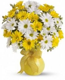 Upsy Daisy Floral Arrangement
