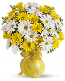 Upsy Daisy vased arrangement