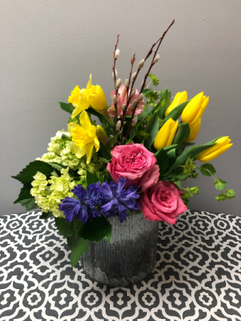 Urban Garden Four Seasons Series