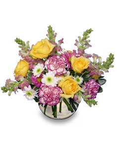 DELTA SUNRISE Fresh Flowers in Port Dover, ON   Upsy Daisy Floral Studio