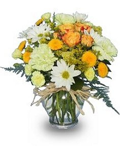 SUNNY FLOWERS In A Vase